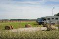 Aire de camping-car Sully-sur-Loire 3