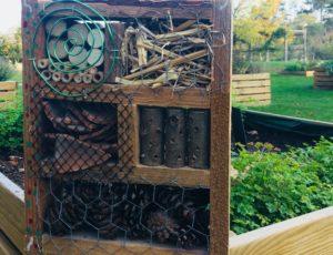 Cabane à insectes2
