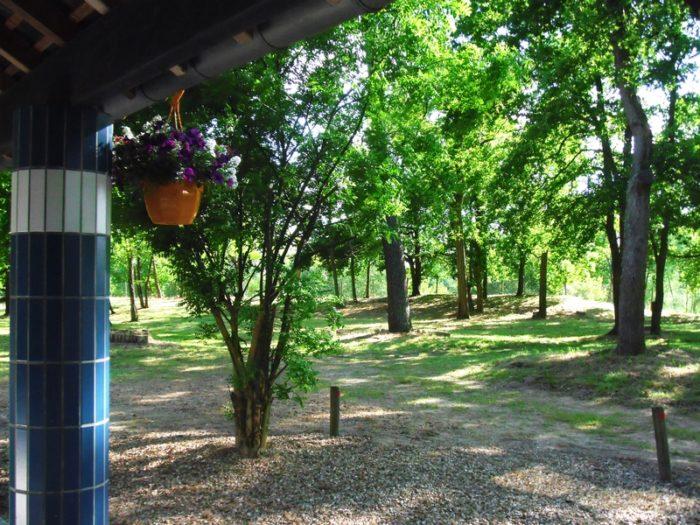 Camping Le Port_Saint Benoit sur Loire (3)_WEB