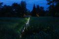 Grande plaine Parc Floral de la Source, Orléans-Loiret©Lucas Goy