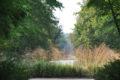 Le Bouillon source du Loiret©Parc Floral de la Source, Orléans-Loiret