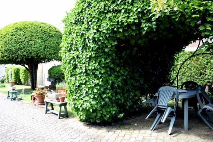 Le Petit Bois Sully