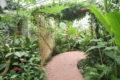 Parc Floral 27
