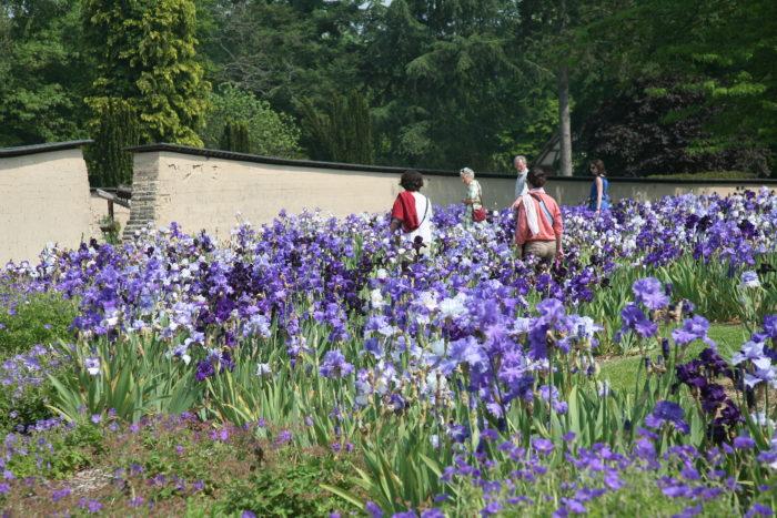 Parc Floral 36
