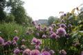 Parc Floral 45
