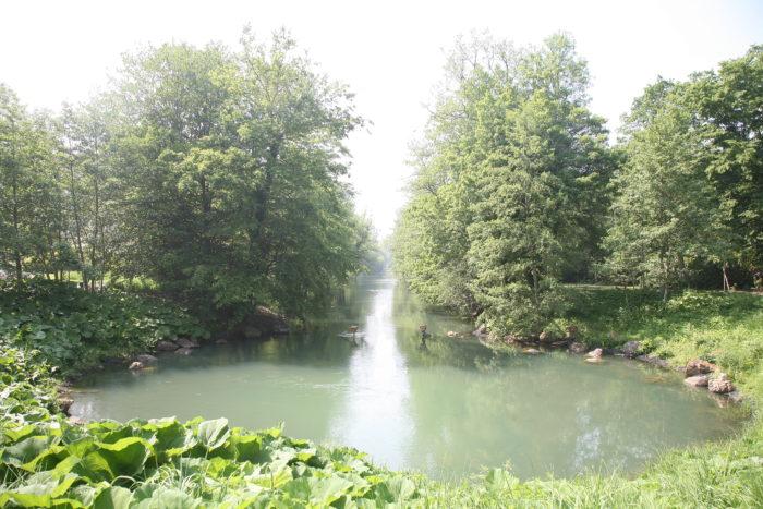 Parc Floral 51