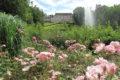 Parc Floral 53