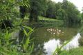 Parc Floral 66