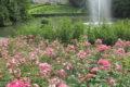 Parc Floral 82