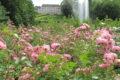 Parc Floral 83