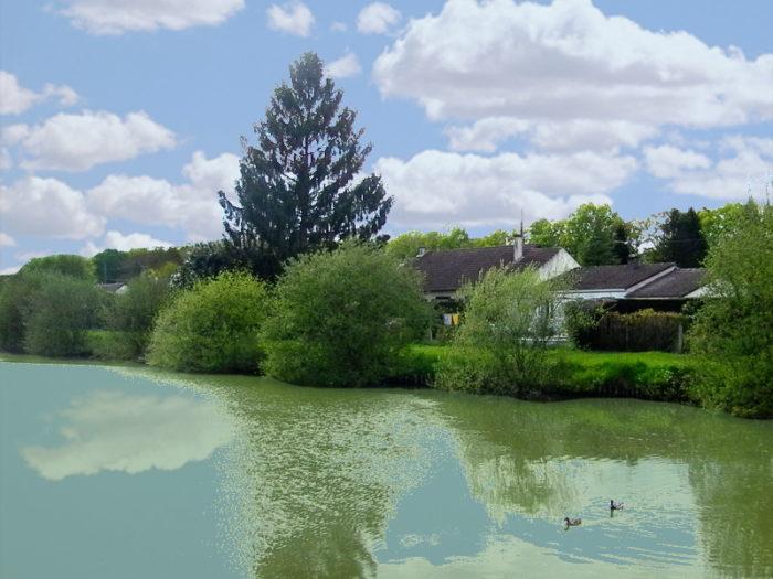 Saint Florent étang
