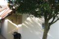 Terrasse Mini-Duplex