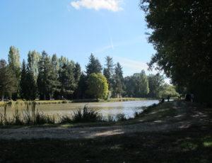 VILLEMURLIN—Etang-des-Farnaults-1
